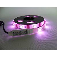 Zlevnili jsme pro vás LED pásky