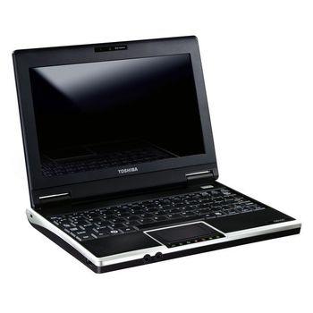 """Toshiba NB NB100-12M Atom N270/1.6GHz, 8.9"""" WSVGA, kamera, 1GB, 160GB, BT, 802bg, XP Home - Stříbrný"""